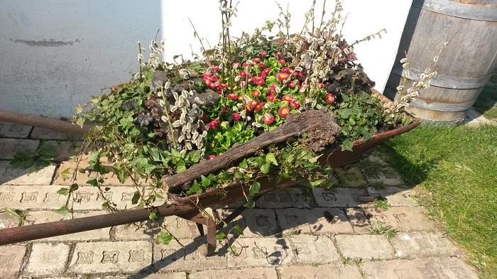Blumengaerten Hirschstetten - Bauernhof