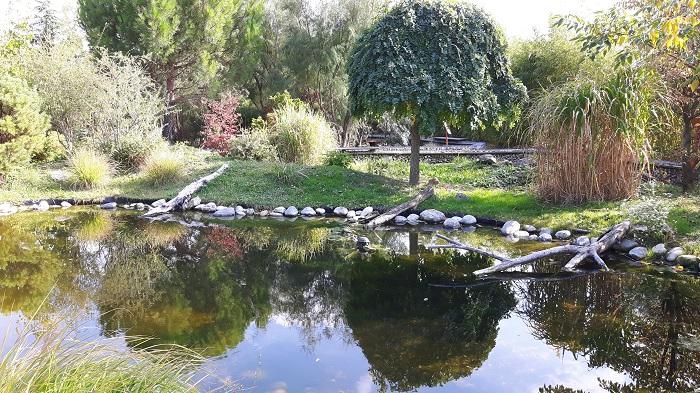 Blumengärten Hirschstetten - Zoo - Schildkrötengarten